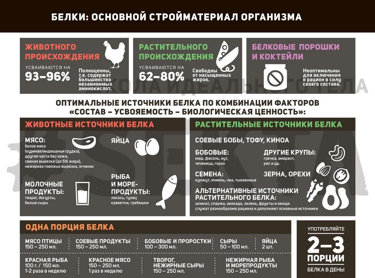 Белок инфографика