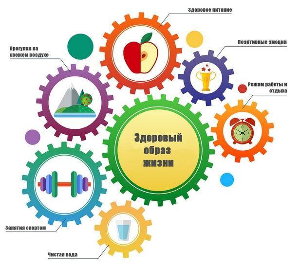 ЗОЖ инфографика