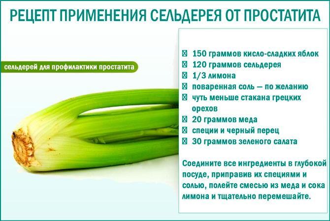 Рецепт применения сельдерея от простатита