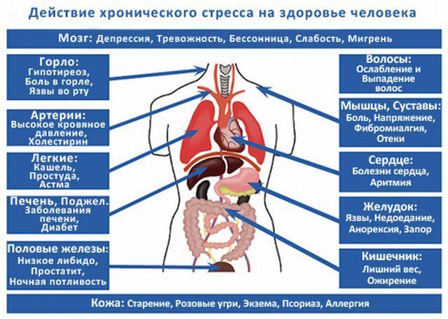 Действие хронического стресса на здоровье человека