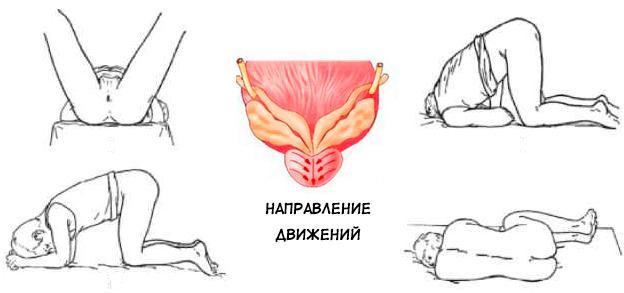 Позы для проведения массажа простаты