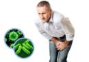 Лечение различных видов инфекционного простатита