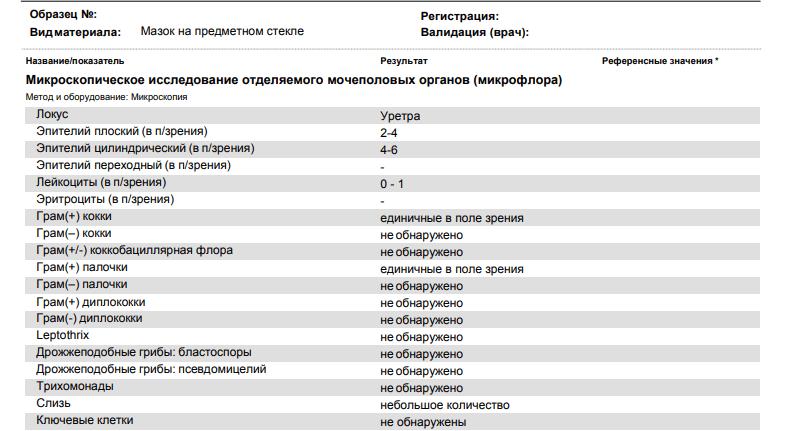Результаты ПЦР анализа
