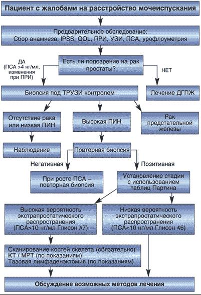 Общая схема диагностики рака простаты с применением различных методов