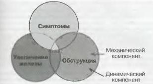 Основные составляющие клинической картины аденомы