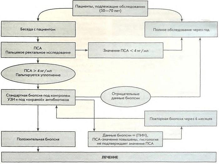 Схема исследования ПСА при скрининге