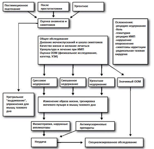 Схема начального обследования при недержании (ООМ – объем остаточной мочи)