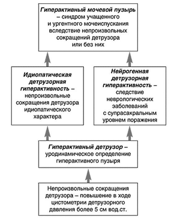 Терминология для определения ГАМП