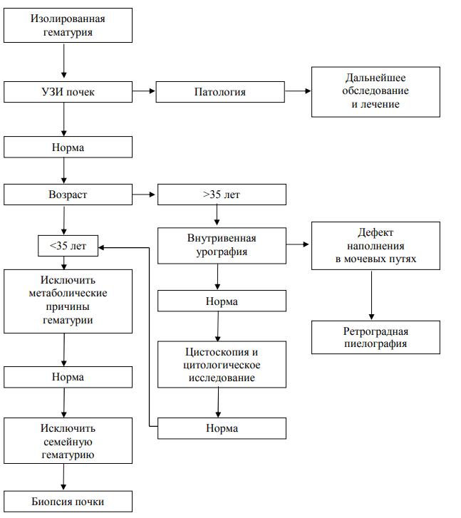 Диагностика бессимптомной (изолированной) гематурии