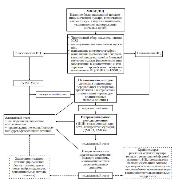 Общая схема диагностики и лечения мочепузырных хронических тазовых болей
