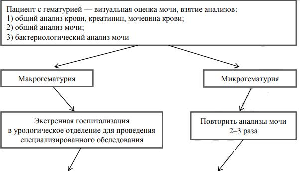 Общая схема диагностики пациента с гематурией
