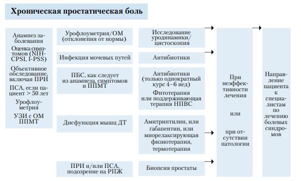 Схема лечения хронической простатической боли