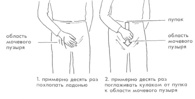 Вариант тренировки мочевого пузыря для нормализации рефлексов