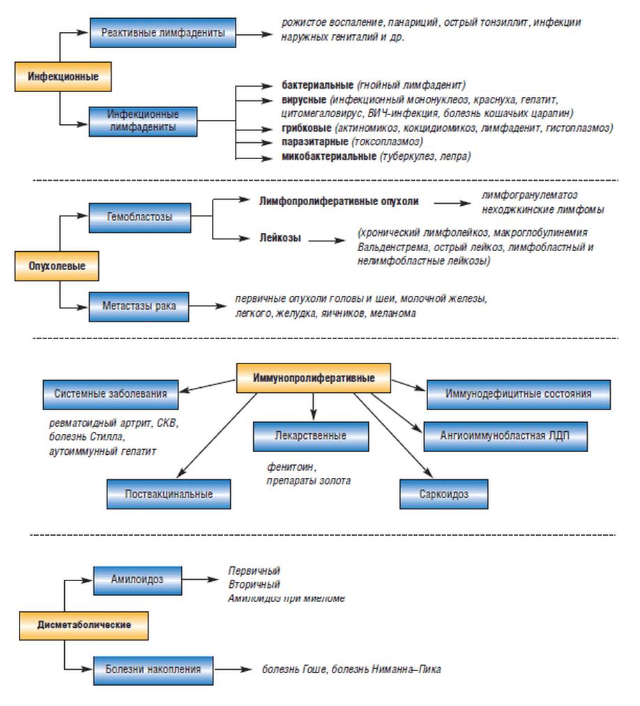 Классификация лимфаденитов (сводная схема)