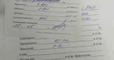 Проба по Нечипоренко