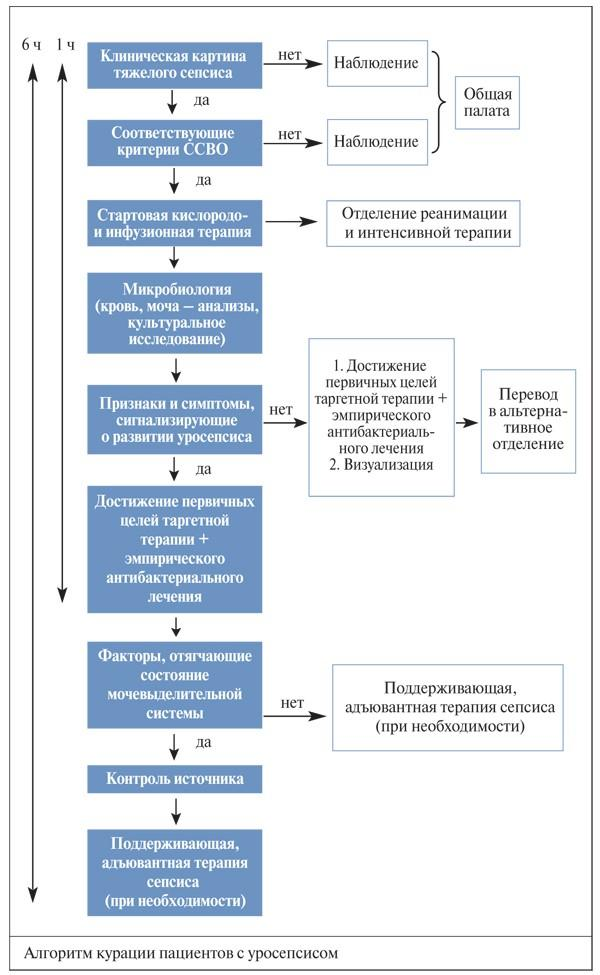 Схема ведения больного с уросепсисом