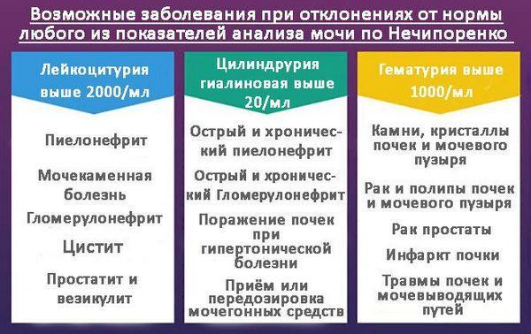 Заболевания при отклонениях показателей анализа мочи по Нечипоренко