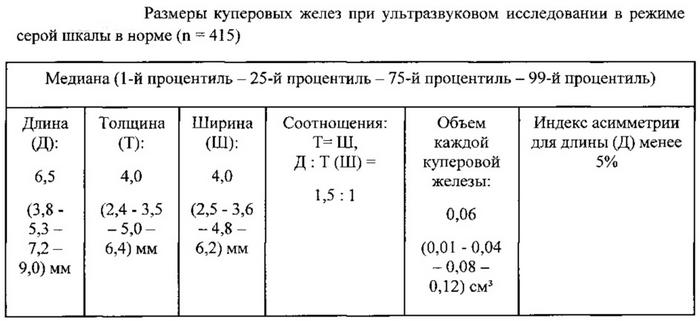 Размеры куперовых желез на УЗИ