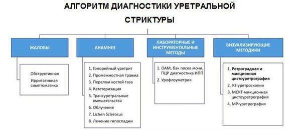 Общий алгоритм диагностики